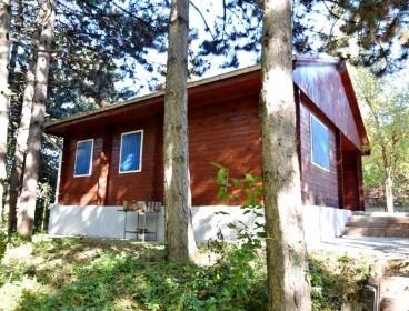 Viva Imobiliare - Bucium-Paun, casa de vacanta in padurea cu pini