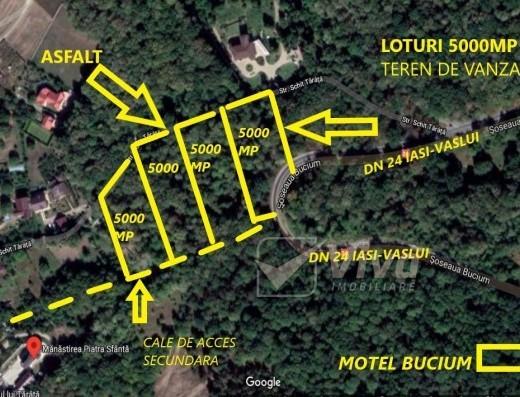 Viva Imobiliare - Bucium-Pietrarie, teren 5000 mp, la asfalt, padure